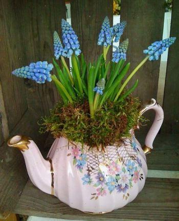 Teapot Flower Planter