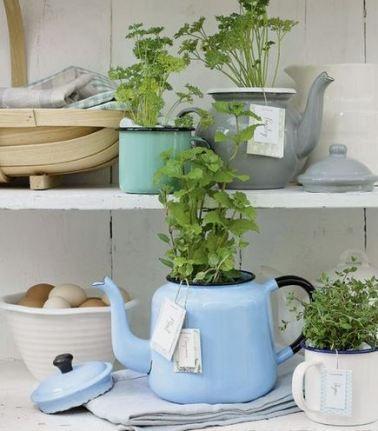 Teapot Herb Garden