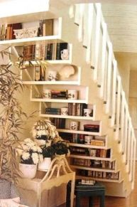 Understair Book Shelves